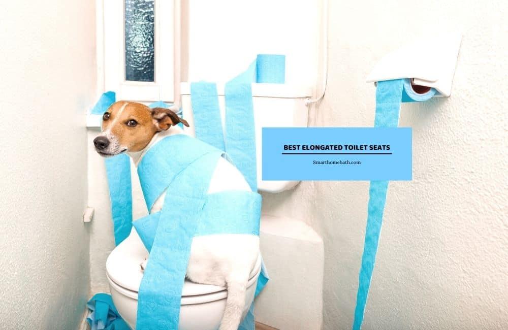 Best Elongated Toilet Seats