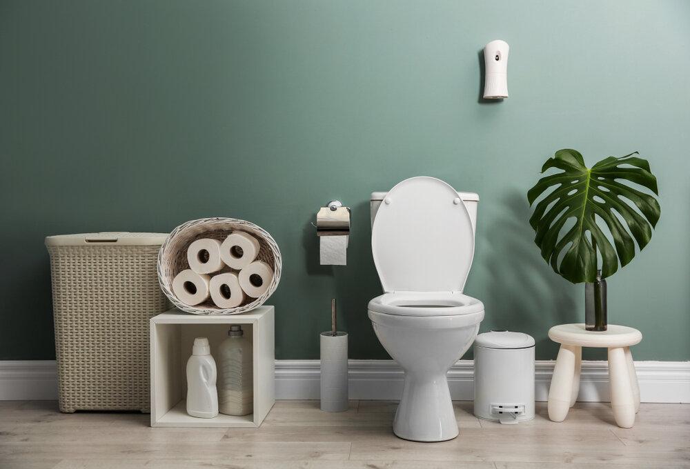 best toilet under $300